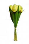 Tulipan bukiet z gumowym liściem 7 szt. MIX