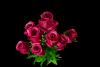 Bukiet róża z dodatkami 11 kwiatów MIX