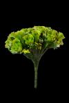 Bukiet róża z dodatkami 24 kwiatów MIX - 18Y104