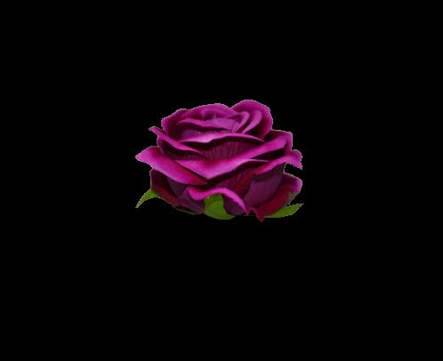 Róża VELVET wyrobowa rozwinięta DE LUX