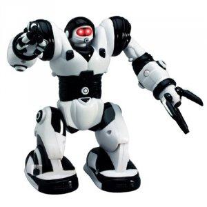 Robone - POSERWISOWY (Uszkodzona elektronika lub części mechaniczne)