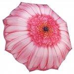 Pink Daisy - różowa stokrotka - parasolka składana Galleria
