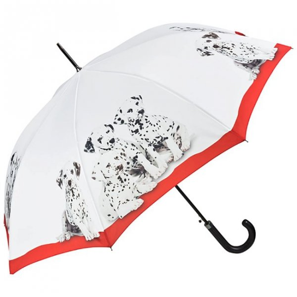 Dalmatyńczyki - Parasol długi ze skórzaną rączką