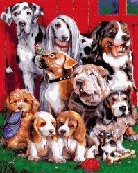 Obraz Malowanie po numerach Psy