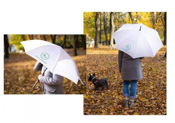 Parasol Jelonki - Zielony