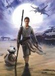 Fototapeta Star Wars Rey 4-448 Gwiezdne Wojny