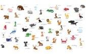 Fototapeta Zwierzęta Alfabet 15392