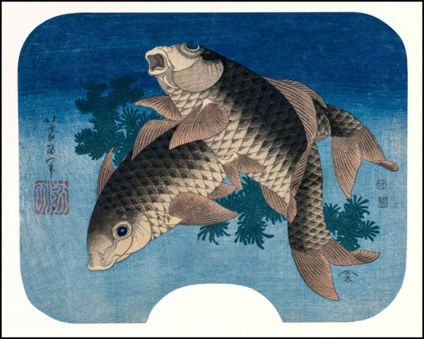 Hokusai, Carp Swimming by Water Weeds - plakat