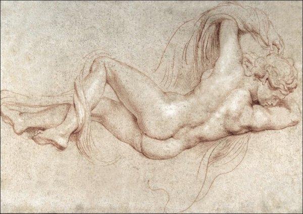 Hermaphrodite, Rubens - plakat