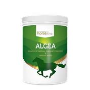 HorseLinePRO Algea 1500g proszek