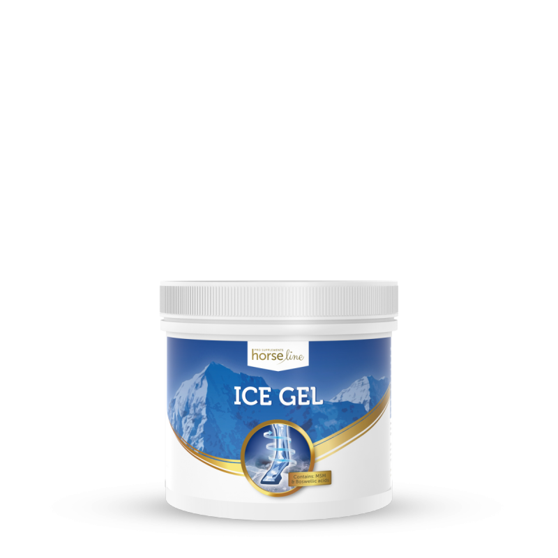 HorseLinePRO IceGel650 ml
