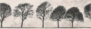 Opoczno Willow Sky Insero Tree 29x89