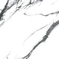 Geotiles Oikos Black Polished 60x60