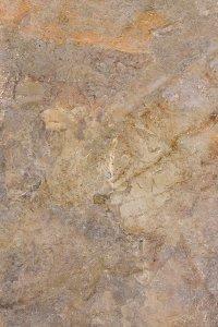 Paradyż Burlington Rust Płyta Tarasowa 2.0 59,5x89,5