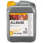 Pallmann AllBase lakier podkładowy spirytusowy
