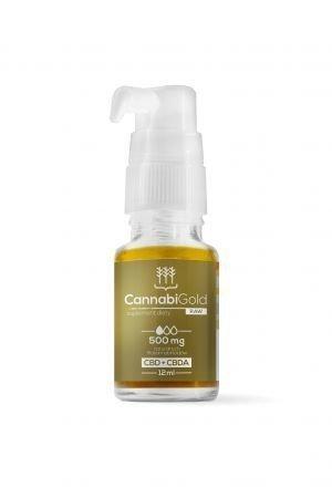 HemPoland CannabiGold RAW 500 mg, 12 ml
