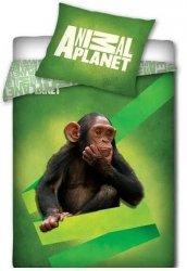 Pościel licencyjna Animal Planet 100% bawełna 160x200 - Małpa