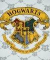 Piżama Harry Potter Hogwarts granatowa