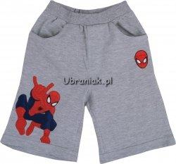 Spodenki Spiderman Go szare