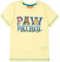 T-shirt PAW PATROL  żółty