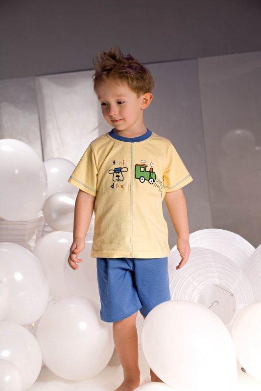Chlapecké pyžamo Samuel 2973 žluto-modré