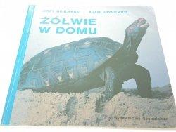 ŻÓŁWIE W DOMU - J. Gosławski, A. Hryniewicz (1992)