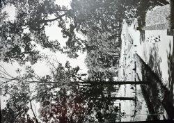 TOMASZÓW MAZOWIECKI. PARK XX-LECIA PRL FOT. M. PETRUSZKA
