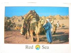 EGYPT – CAIRO. RED SEA