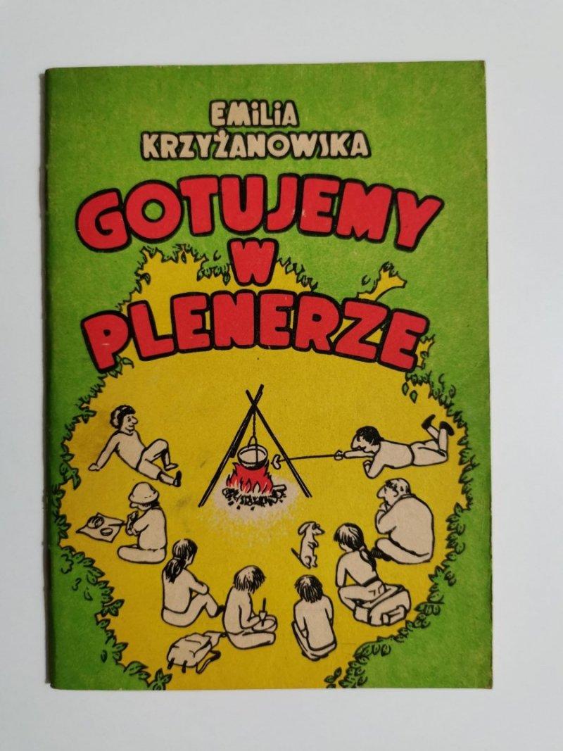 GOTUJEMY W PLENERZE - Emilia Krzyżanowska 1985