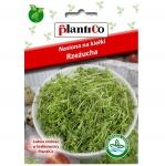 RZEŻUCHA nasiona na kiełki Horticenter-Q 30g