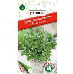 PORTULAKA WARZYWNA pospolita nasiona 0,3g Plantico Mini Ogród