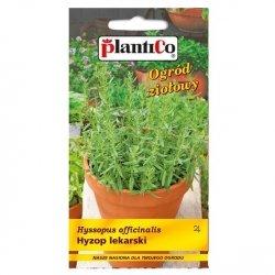 HYZOP LEKARSKI nasiona ziół i przypraw 0,2g