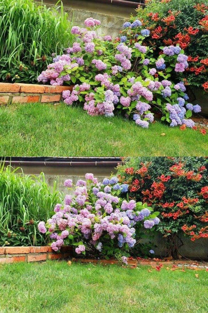 Podpora RING do kwiatów krzewów roślin 21cm - 10szt.