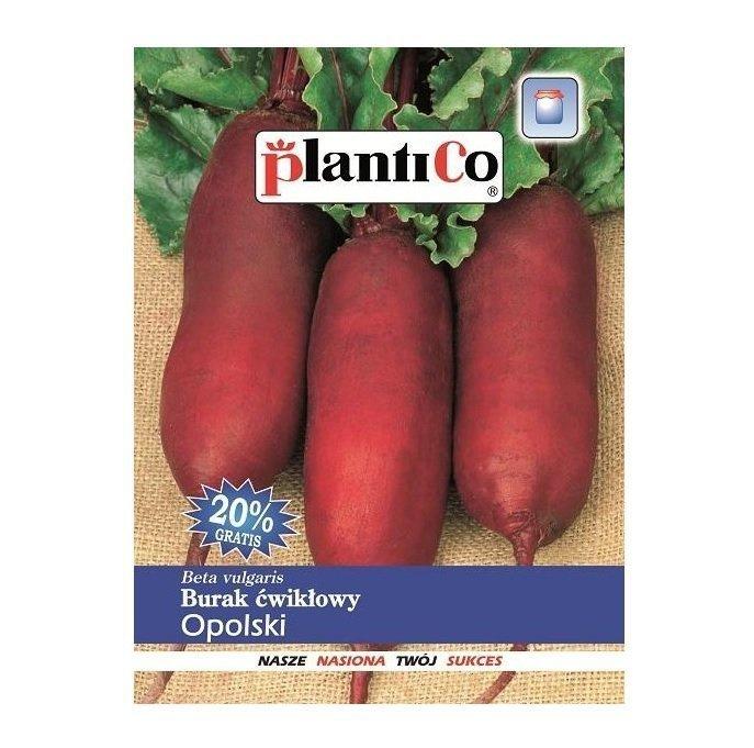 Burak ćwikłowy OPOLSKI nasiona 12 g PLANTICO