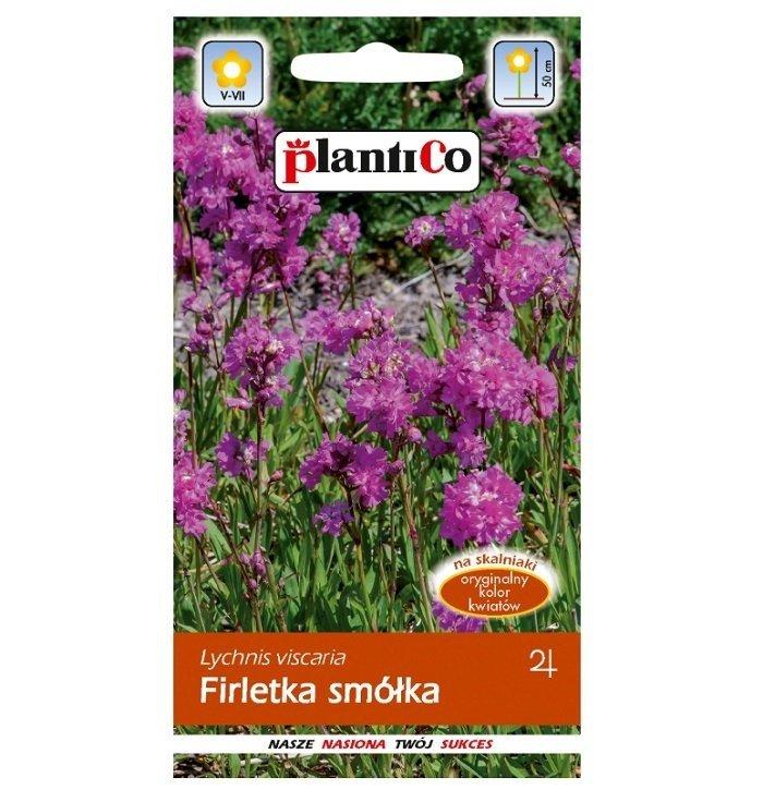 Firletka smółka nasiona Plantico