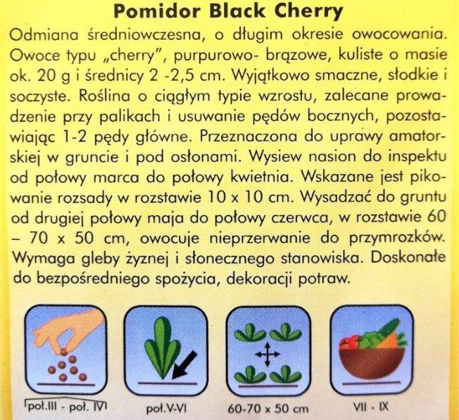 Pomidor black Cherry nasiona Plantico