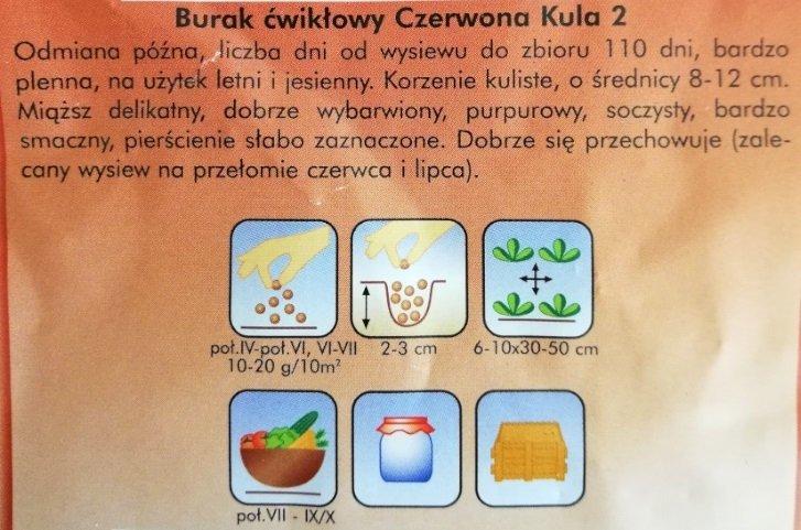 Burak ćwikłowy CZERWONA KULA 2 nasiona 12 g PLANTICO