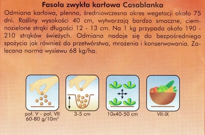 Fasola szparagowa zielona CASABLANKA