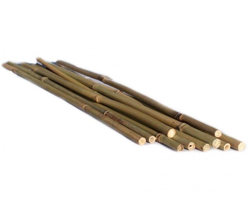 TYCZKI BAMBUSOWE 45cm podpory do roślin 100szt.