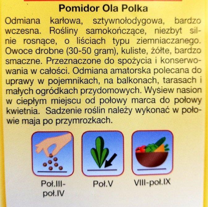 Pomidor Olka Polka nasiona Plantico