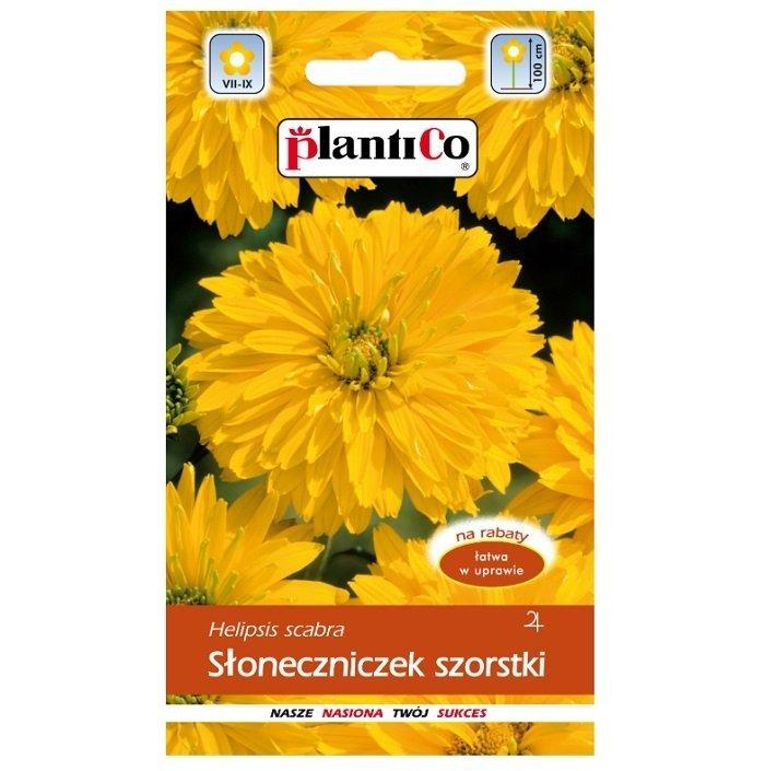 Słoneczniczek szorstki nasiona Plantico