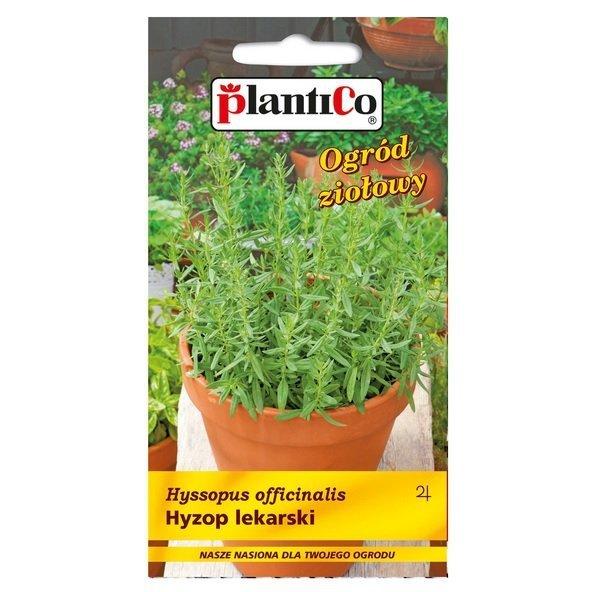 Hyzop lekarski nasiona