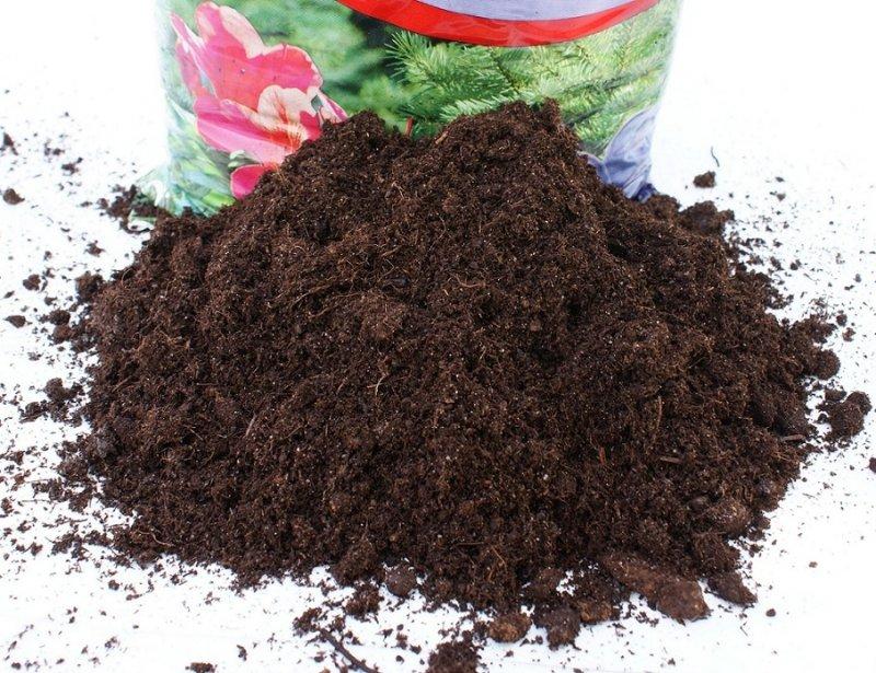 Torf ogrodniczy kwaśny