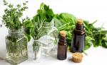 Leki z roślin