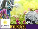 Hydrożel ogrodniczy - ochrona przed suszą - granulat 20g