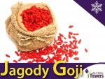 Jagody Goji  (Lycuim chinensis) 0,1g
