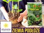 Podłoże do roślin zielonych i palm COMPO SANA 10L