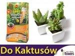Odżywka do kaktusów COMPO 30ml