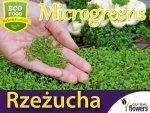 Microgreens - Rzeżucha 4g