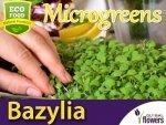 Microgreens - Bazylia Cytrynowa Mrs Burns 3g